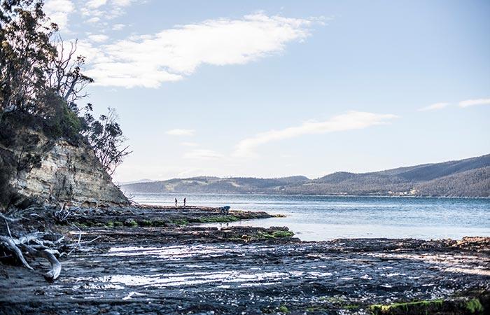 Satellite Island coastal scenery.