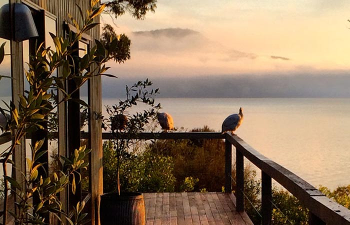 Satellite Island summer house porch with a bird on the fense and the sea in the background at sunset.