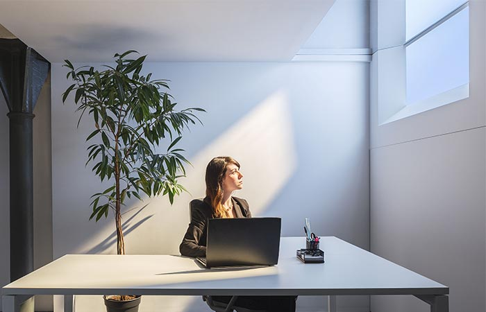 An Office Using Coelux Artificial Light