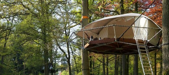 Dom'Up Treehouse