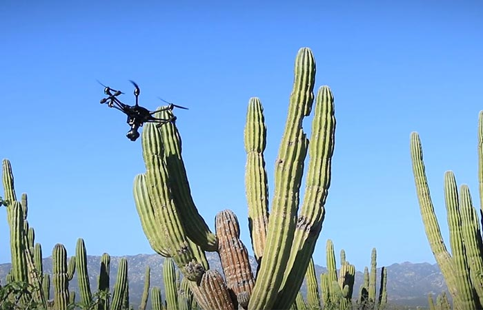 Typhoon H drone moving around a cactus
