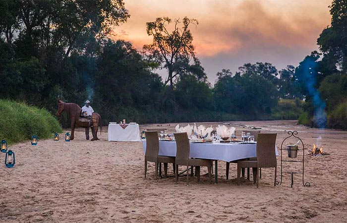 The Safari Collection Outdoor Dinner