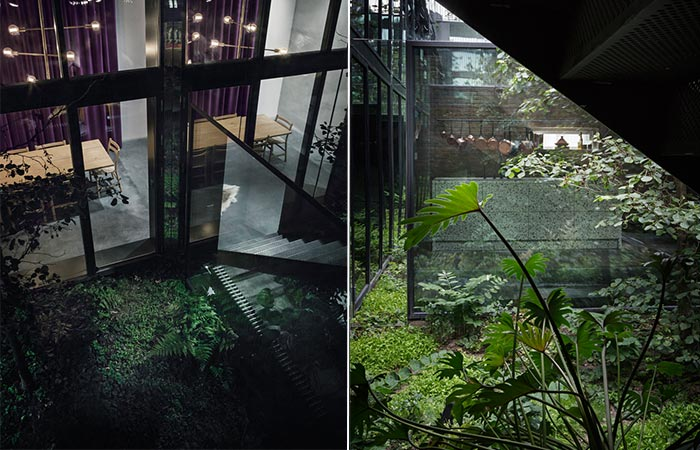 Peter's House Atrium