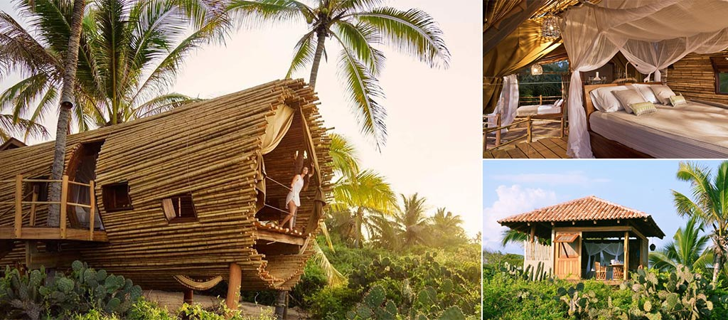 Playa Viva | Sustainable Boutique Hotel In Mexico