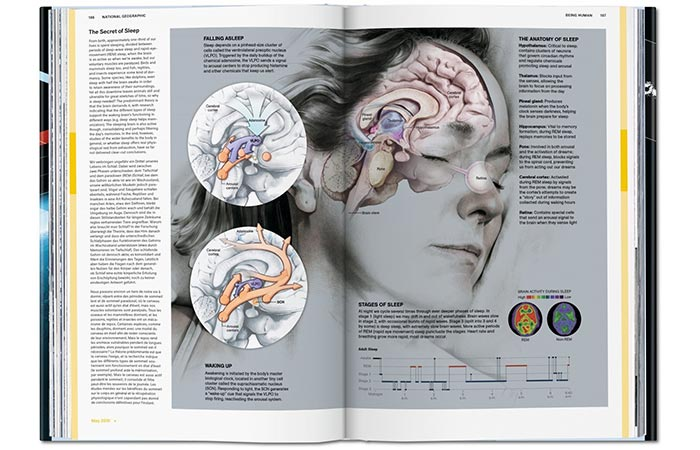 National Geographic Infographics page about sleep