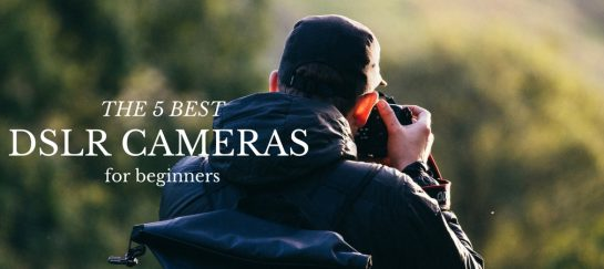 The 5 Best DSLR Cameras To Start With For Beginners