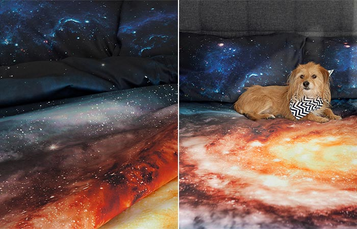 Galaxy Bedding with dog