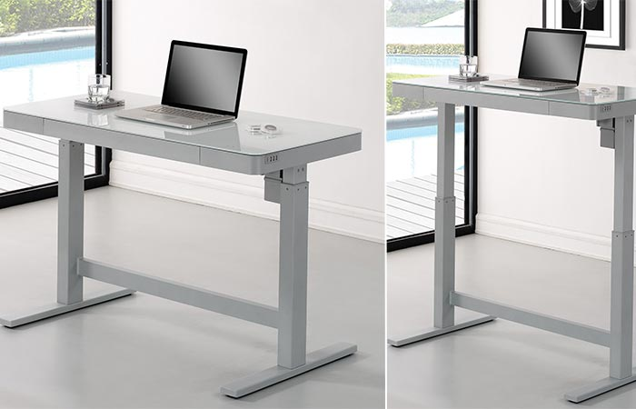 Wildon Home Standing Desk