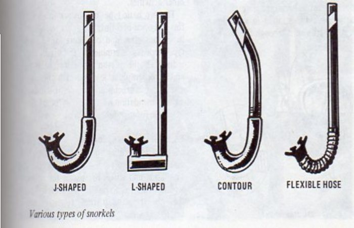 Types of snorkels