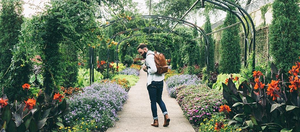 Man in the greenhouse garden