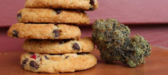 Will CBD Edibles Show on a Drug Test?